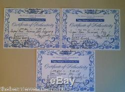 (3) Princess Diana Beanie Babies PVCAuthenticatedSuper Hard To Find