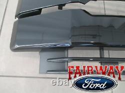 17 À Travers 19 Super Duty F-250 -f350 F-450 F550 Oem Ford Black Painted Sport Grille